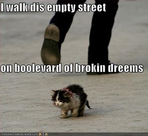 I walk dis empty street on boolevard of brokin dreems