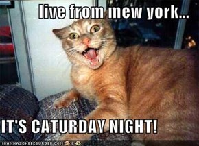 live from mew york...  IT'S CATURDAY NIGHT!