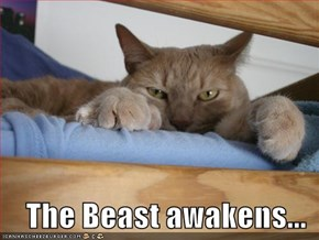 The Beast awakens...