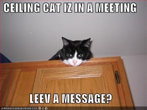 CEILING CAT IZ IN A MEETING  LEEV A MESSAGE?