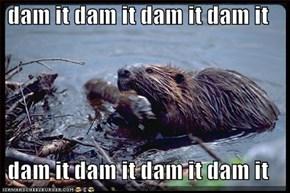dam it dam it dam it dam it  dam it dam it dam it dam it