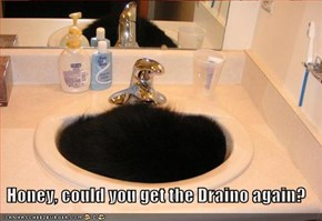 Honey, could you get the Draino again?