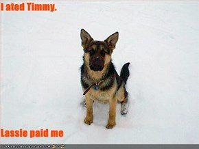 I ated Timmy.  Lassie paid me