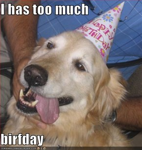 I has too much  birfday
