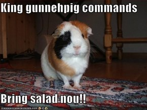 King gunnehpig commands  Bring salad nou!!
