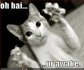 oh hai...  ...ur awake.