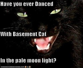 Have you ever Danced With Basement Cat In the pale moon light?