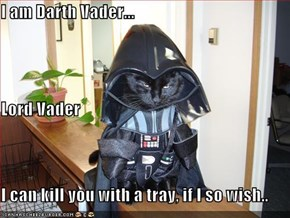I am Darth Vader... Lord Vader I can kill you with a tray, if I so wish..