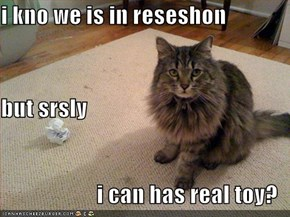 i kno we is in reseshon but srsly i can has real toy?
