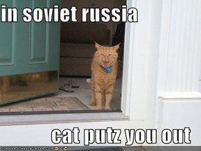 in soviet russia  cat putz you out