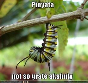 Pinyata   not so grate akshuly