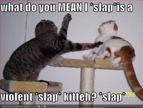 what do you MEAN I *slap*is a  violent *slap* kitteh? *slap*