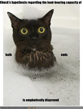 Chuck's hypothesis regarding the load-bearing capacity of          bath                                                                             suds is emphatically disproved