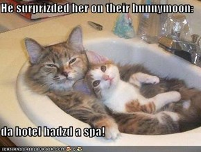 He surprizded her on their hunnymoon:  da hotel hadzd a spa!