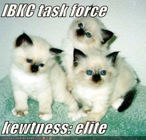 IBKC task force  kewtness: elite