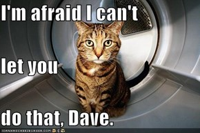 I'm afraid I can't  let you do that, Dave.