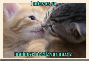 I misses yu  mai noze needz yur nuzzlz