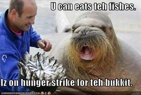 U can eats teh fishes.  Iz on hunger strike for teh bukkit.