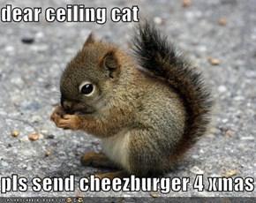 dear ceiling cat  pls send cheezburger 4 xmas