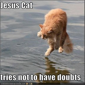Jesus Cat  tries not to have doubts