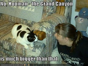 No, Hooman - the Grand Canyon  is much bigger than that