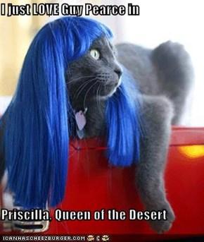 I just LOVE Guy Pearce in  Priscilla, Queen of the Desert