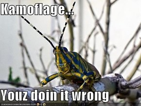 Kamoflage...  Youz doin it wrong