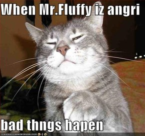 When Mr.Fluffy iz angri  bad thngs hapen