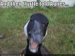 And then Myrtle told Agnes...