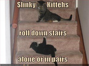 Slinky        Kittehs roll down stairs alone or in pairs