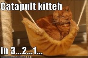 Catapult kitteh  in 3...2...1...