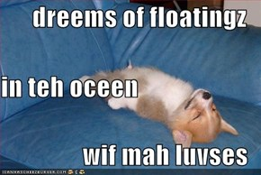 dreems of floatingz in teh oceen wif mah luvses