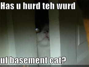 Has u hurd teh wurd  uf basement cat?