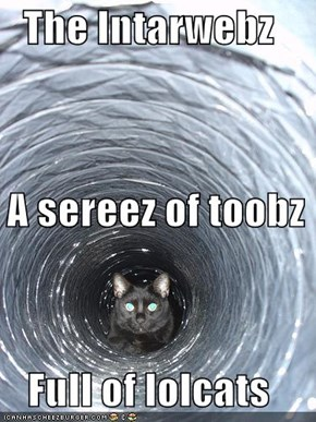 The Intarwebz   A sereez of toobz Full of lolcats