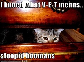 I knoed what V-E-T means..  stoopid hoomans