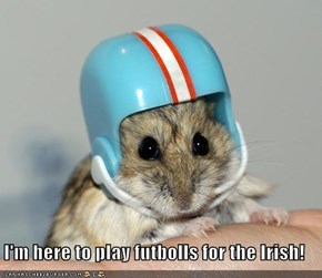 I'm here to play futbolls for the Irish!