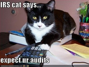 IRS cat says...  expect ur audits