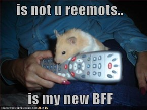 is not u reemots..  is my new BFF