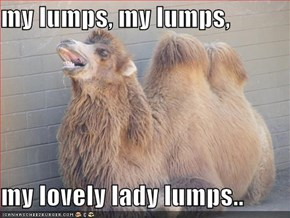 my lumps, my lumps,  my lovely lady lumps..