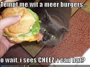 Tempt me wit a meer burgers...  o wait, i sees CHEEZ. i can haz?