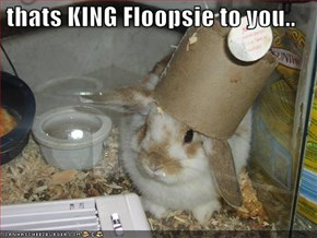 thats KING Floopsie to you..