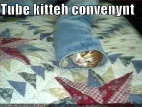 Tube kitteh convenynt