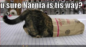 u sure Narnia is tis way?