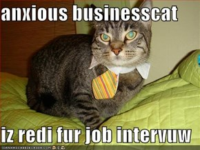anxious businesscat  iz redi fur job intervuw