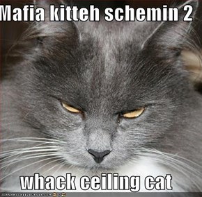 Mafia kitteh schemin 2  whack ceiling cat