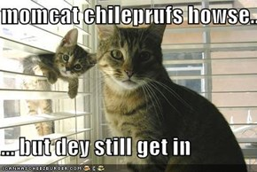momcat chileprufs howse...  ... but dey still get in