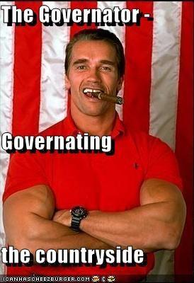 The Governator -  Governating the countryside