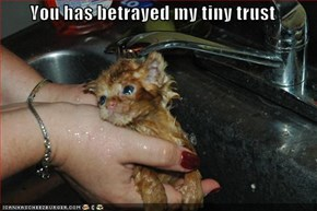 You has betrayed my tiny trust
