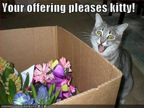 Your offering pleases kitty!