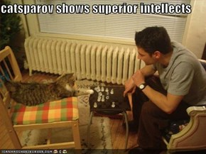 catsparov shows superior intellects